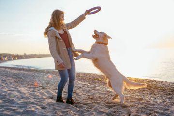 une femme joue avec son chien sur la plage
