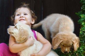 une petite fille tient un chiot dans ses bras