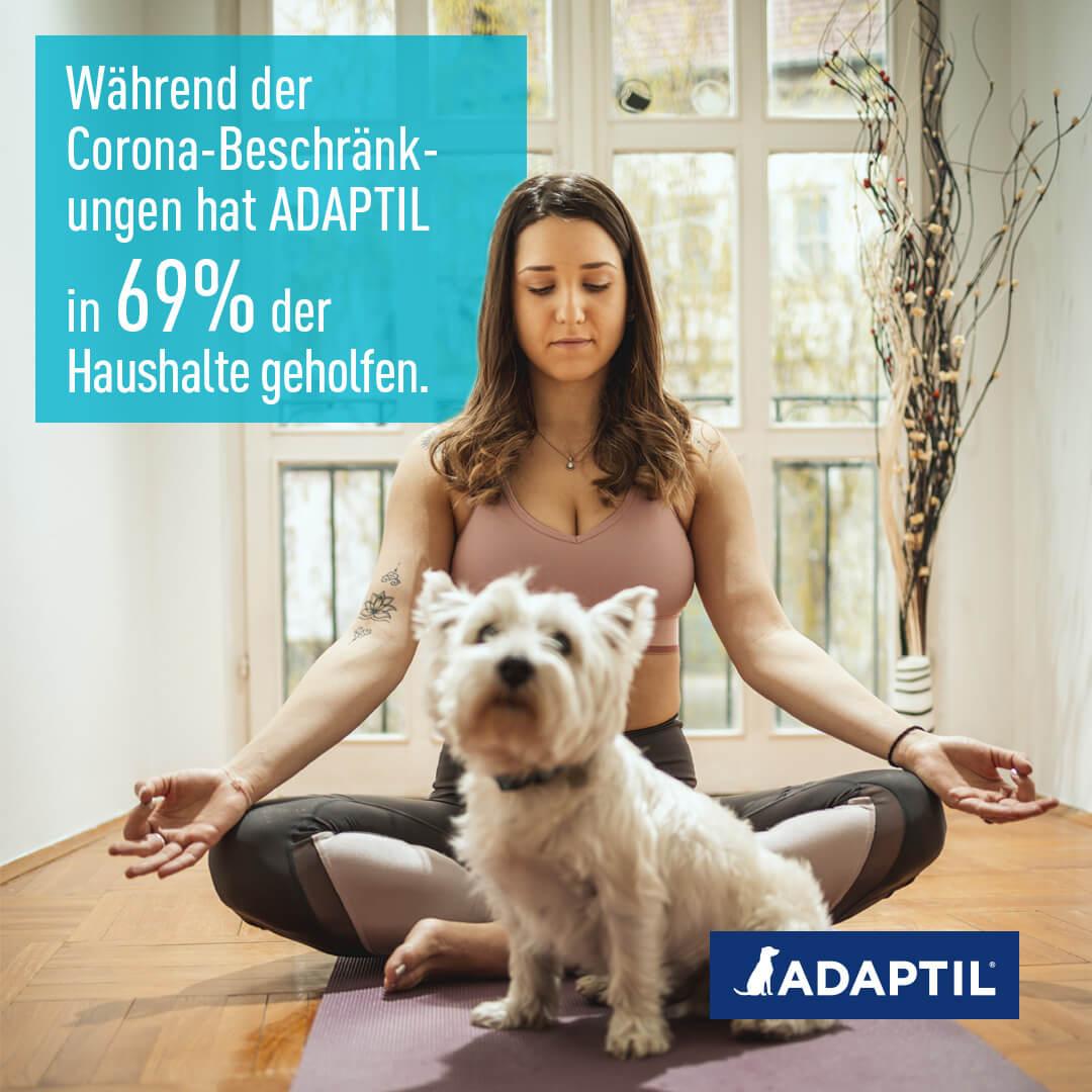 Frau meditiert, Hund sitzt davor.