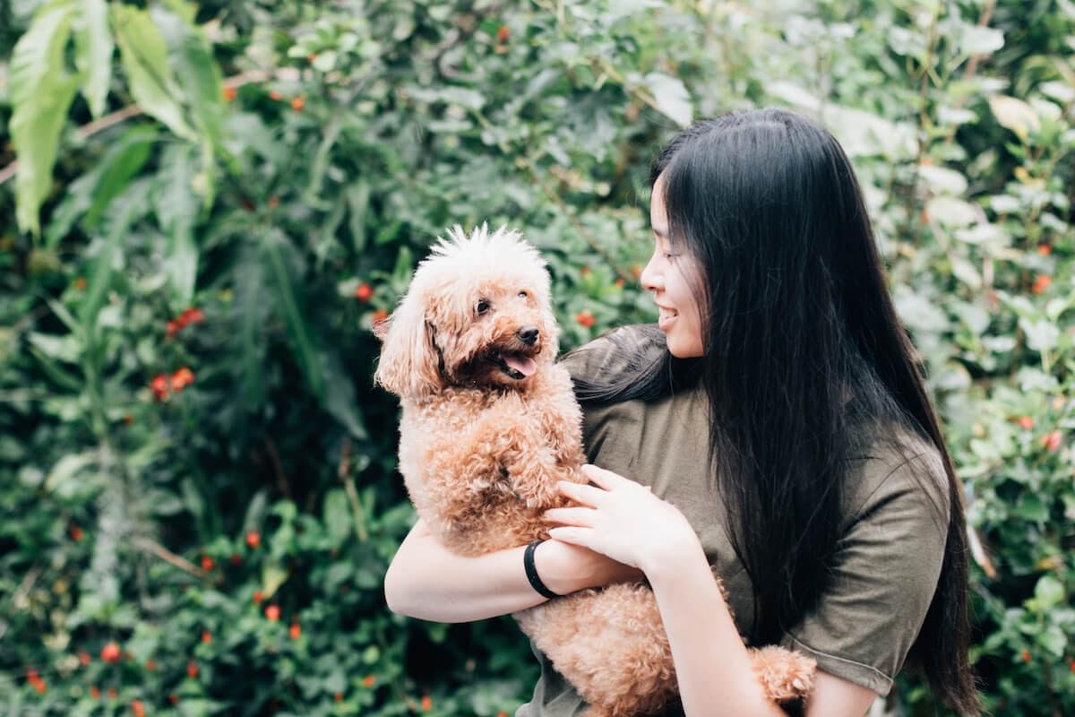 Dogs behaviour changes