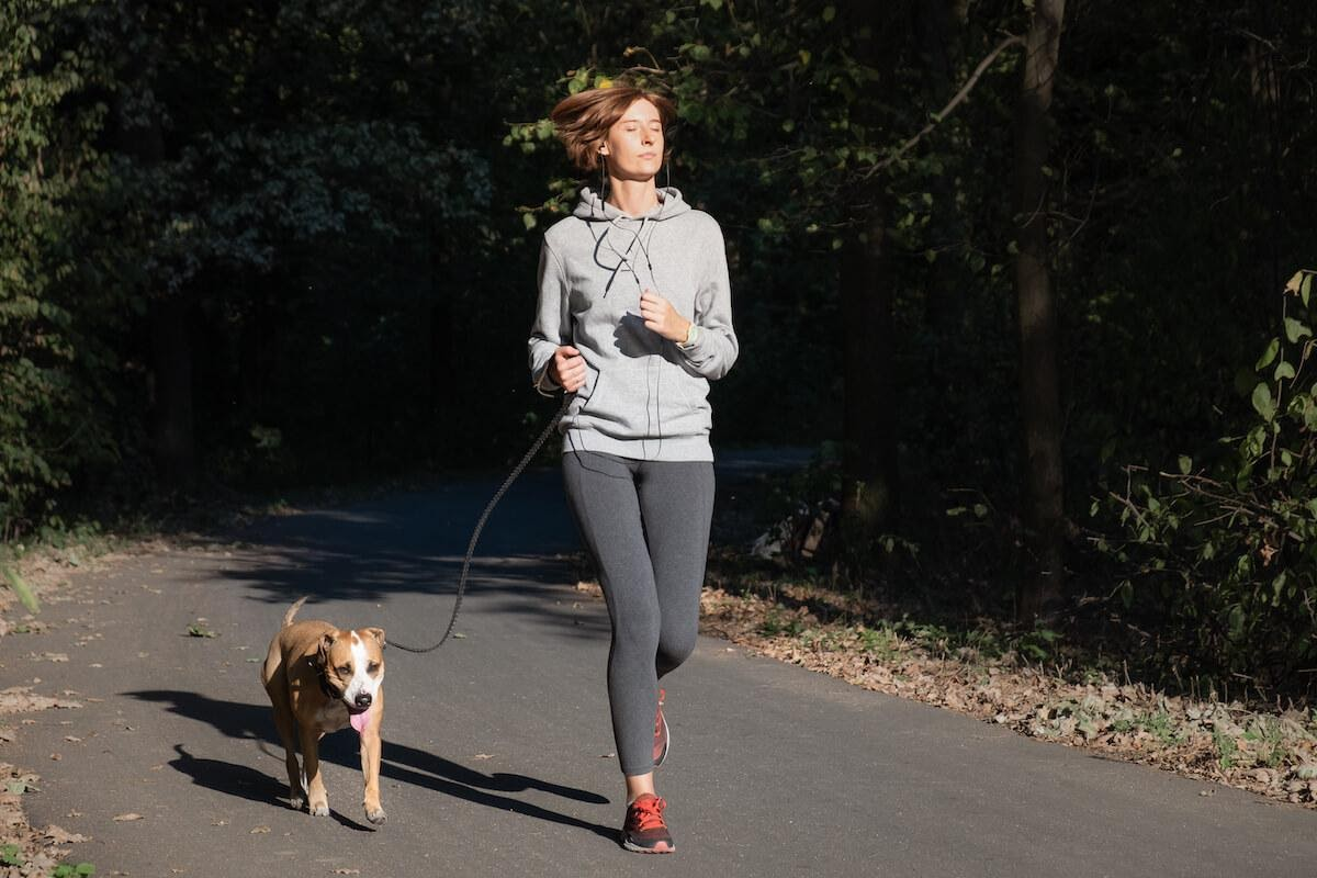 Quanto esercizio fisico deve fare il cane?